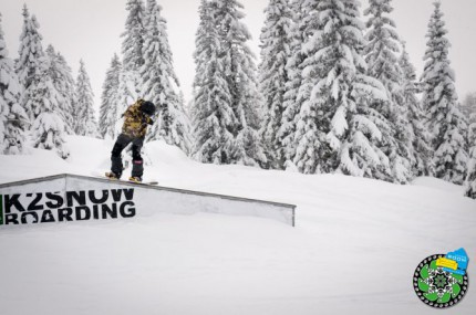 muhlbach-slopestyle-2014